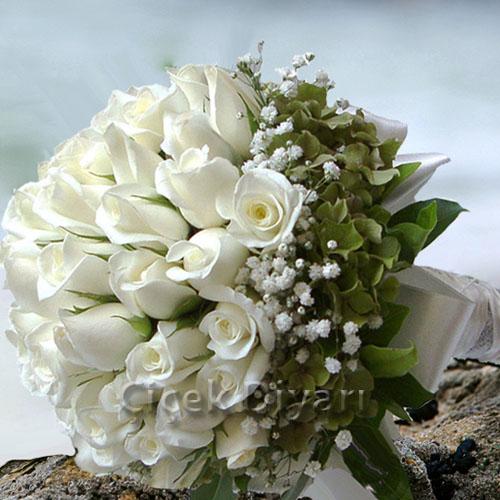 beyaz güller ile ilgili görsel sonucu